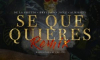 De La Ghetto Ft. Brytiago  Jon Z y Almighty - Se Que Quieres (Remix)