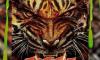 Tali - Tigre (Freestyle)